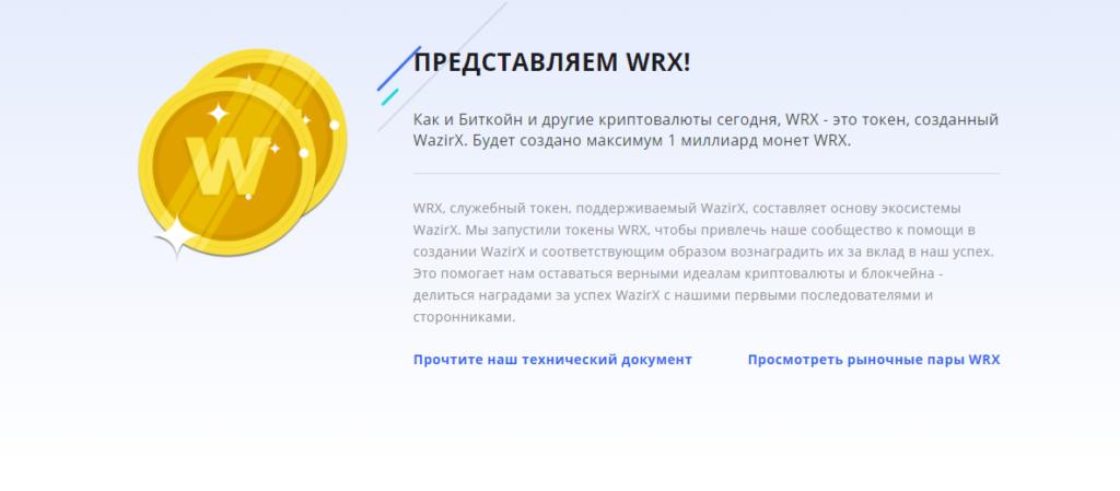 Представление проекта WazirX