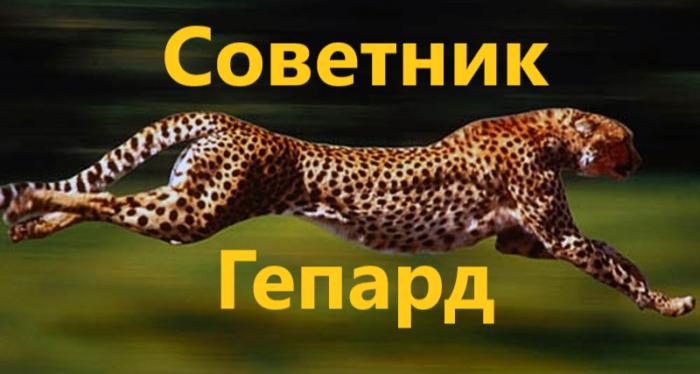 Обзор Форекс советника Gepard: отзывы трейдеров  отзывы о компании, обзор, контакты : https://trustviper.com